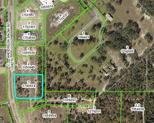 ANDERSON SNOW ROAD Property Photo - SPRING HILL, FL real estate listing
