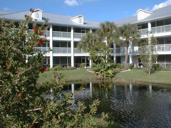 2164 VISTA DEL SOL CIR #524 Property Photo - LUTZ, FL real estate listing