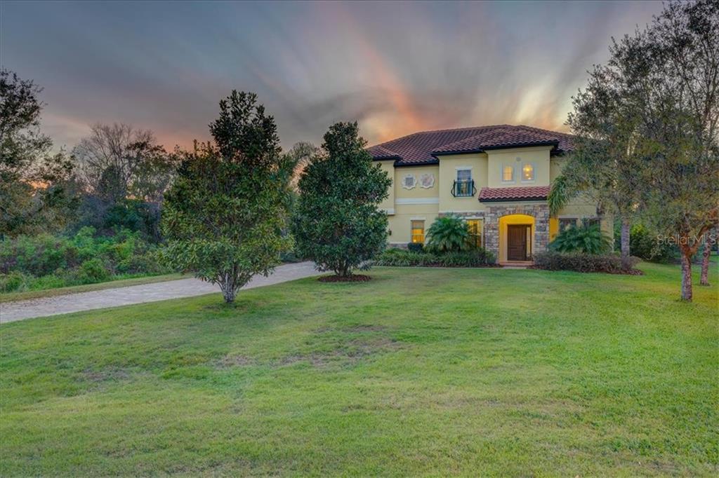 17822 CRYSTAL PRESERVE DR Property Photo - LUTZ, FL real estate listing