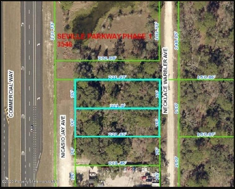 17208 Us19 Commercial Way / Nicasio Jay Avenue Property Photo