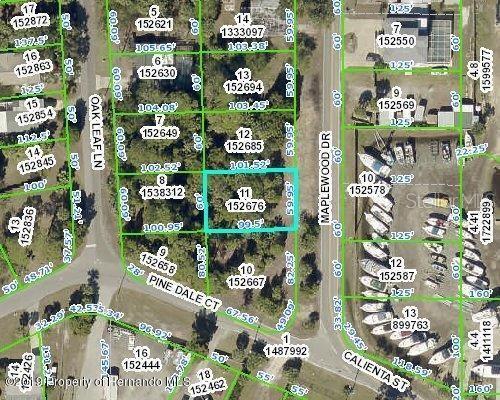 Maplewood Drive Property Photo