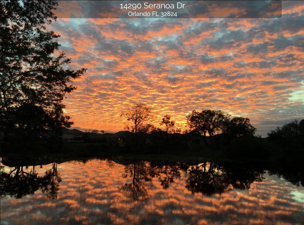 14290 Seranoa Dr Property Photo 22