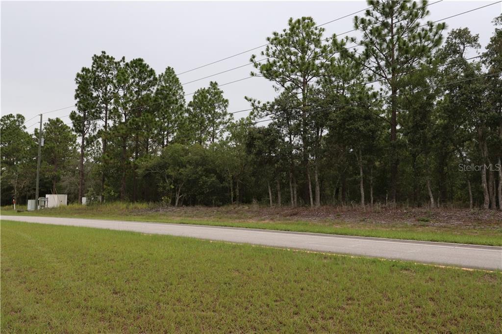 3121 W Pine Ridge Boulevard Property Photo