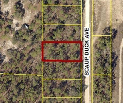0 Scaup Duck Avenue #lot 7 Property Photo