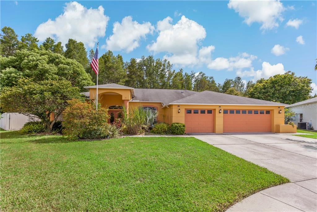 8446 SIAMANG COURT Property Photo - NEW PORT RICHEY, FL real estate listing