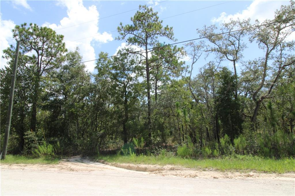 0 GRACKLE ROAD Property Photo