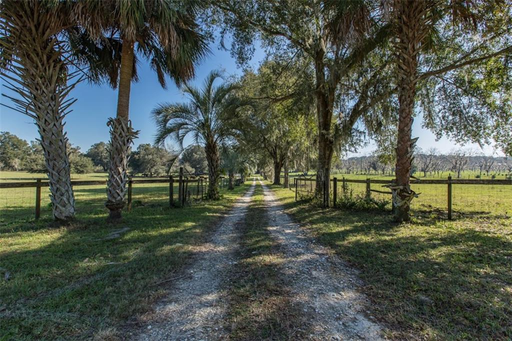 7599 CR 575 Property Photo - BUSHNELL, FL real estate listing