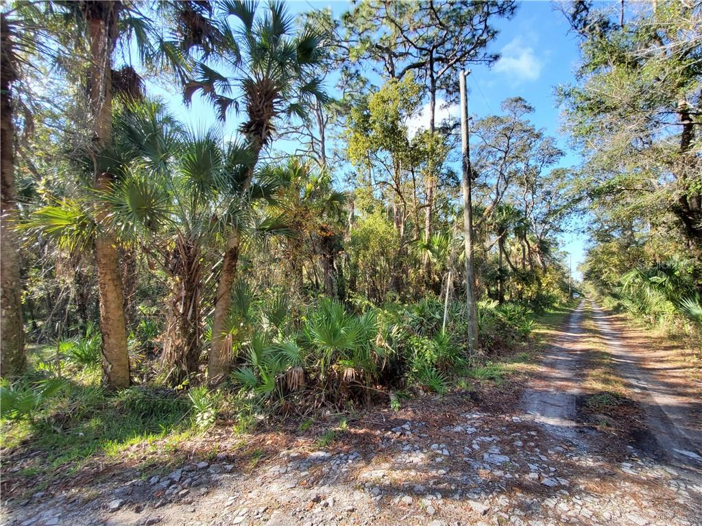 8738 LINDY LANE Property Photo - NEW PORT RICHEY, FL real estate listing