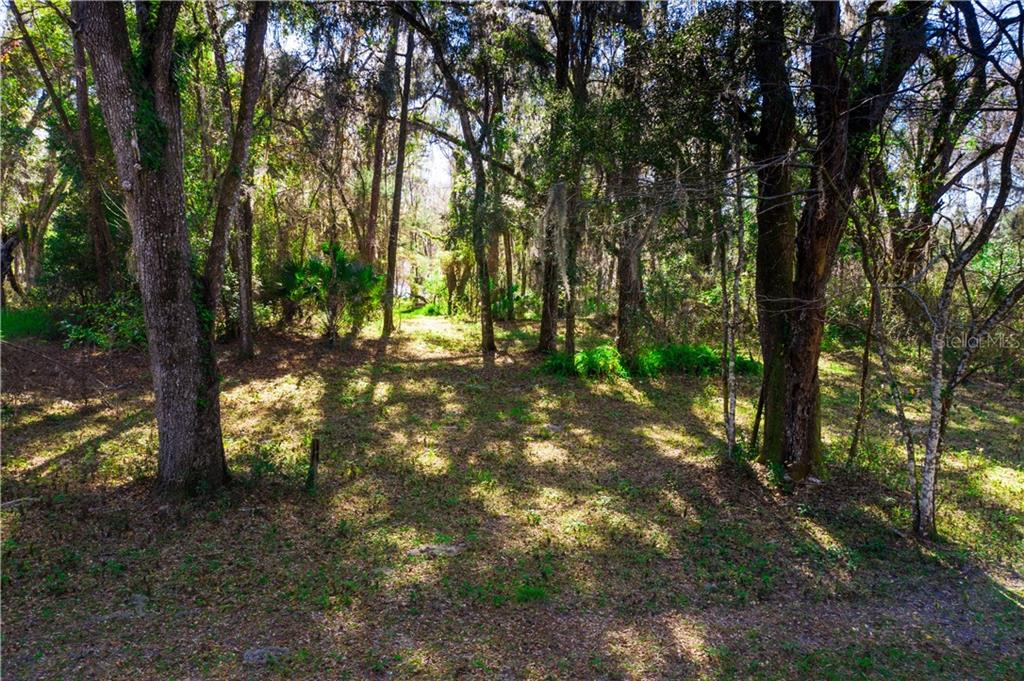 00 CR 647 Property Photo - BUSHNELL, FL real estate listing