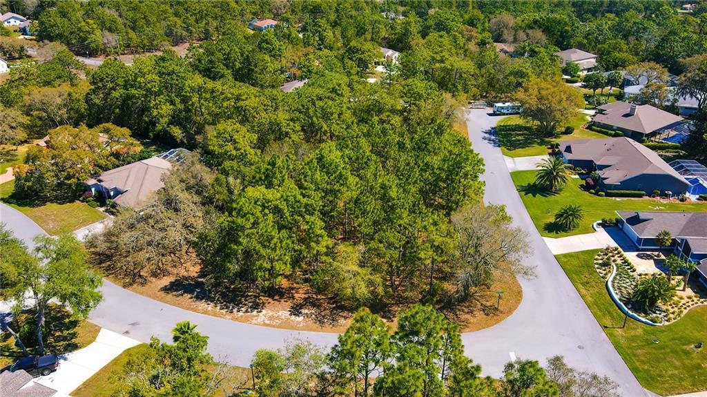 10 Bonnie Drive Property Photo