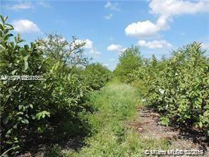 2.5 Ac Buildable W Income Real Estate Listings Main Image