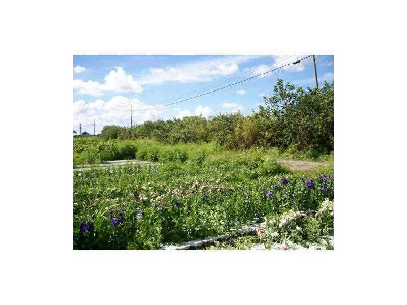 25251 SW 167TH AVE Property Photo - Homestead, FL real estate listing