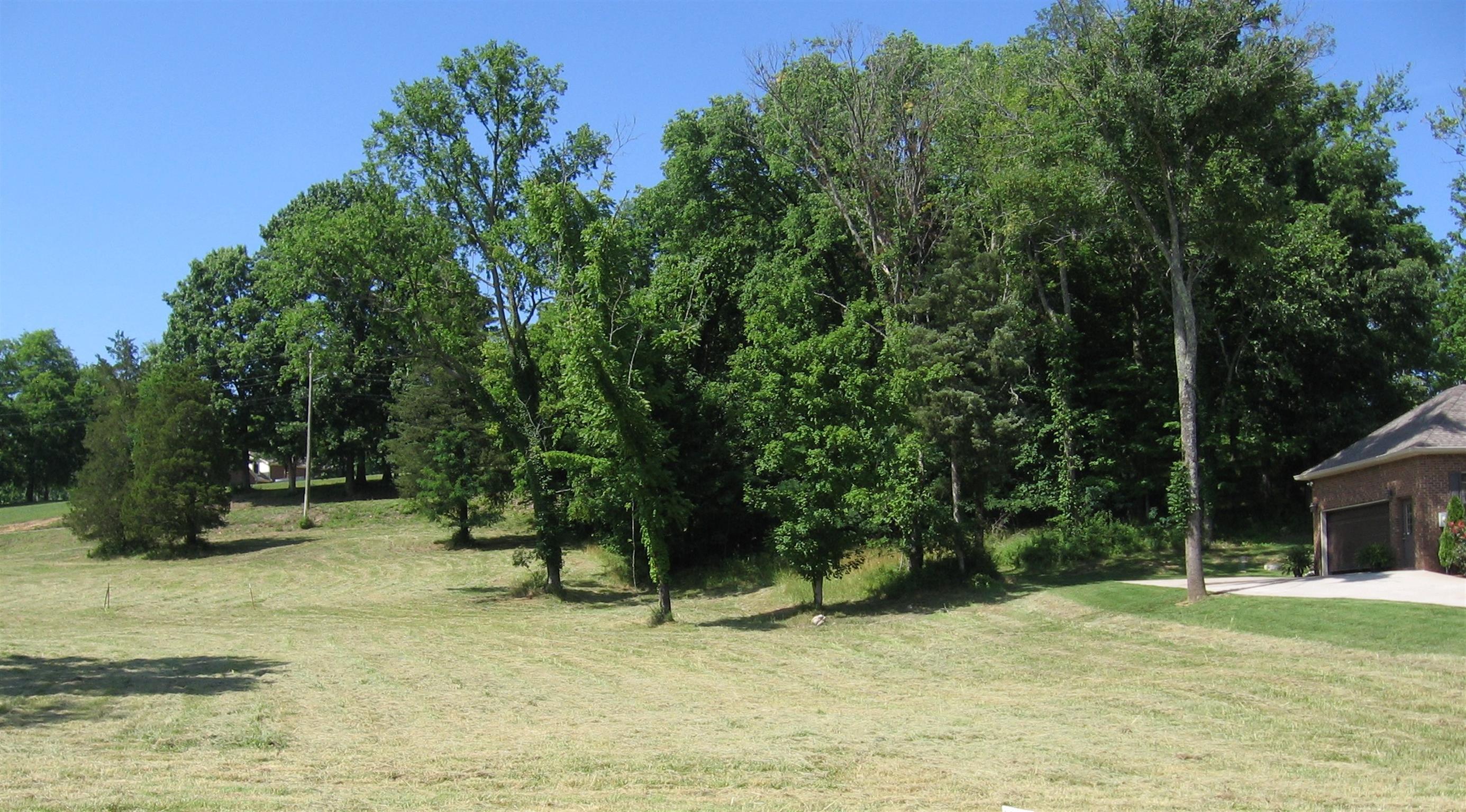763 Brookside Dr, Lewisburg, TN 37091 - Lewisburg, TN real estate listing