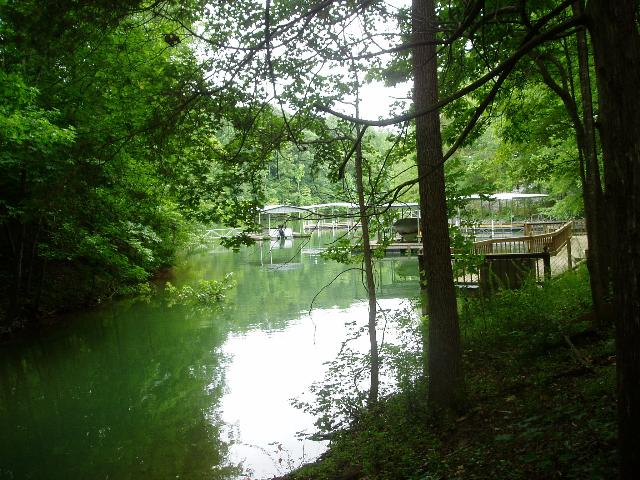 0 Leatherwood Dr Lot 9 Property Photo - Winchester, TN real estate listing