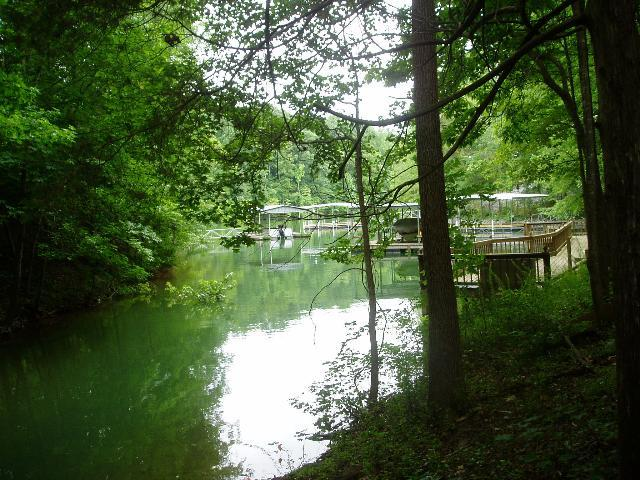 0 Whippoorwill Cove Lot 5 Property Photo - Winchester, TN real estate listing