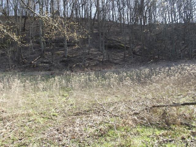 0 Turkey Creek Hwy, Carthage, TN 37030 - Carthage, TN real estate listing