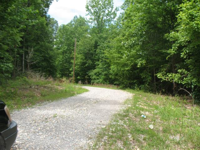 1 Forest Trl Property Photo - Bumpus Mills, TN real estate listing