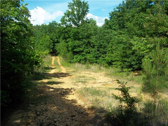 0 Old Highway 13, Hurricane Mills, TN 37078 - Hurricane Mills, TN real estate listing