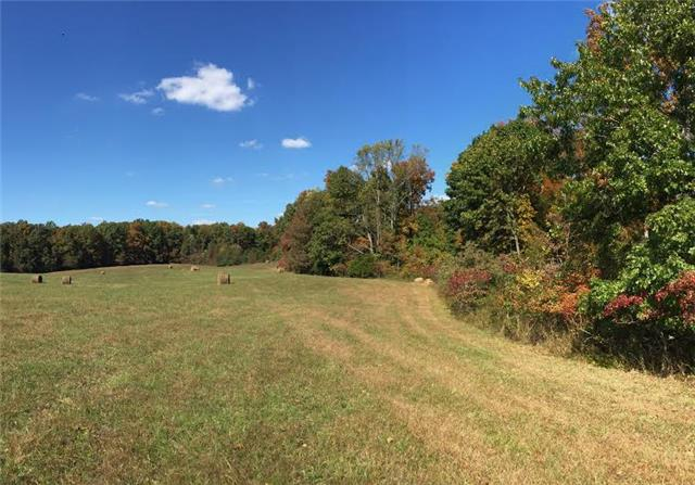 0 Dukes Ln Lot 1, Kelso, TN 37348 - Kelso, TN real estate listing