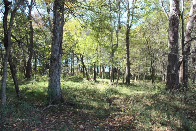 1595 Jessie Hall Ln, Celina, TN 38551 - Celina, TN real estate listing