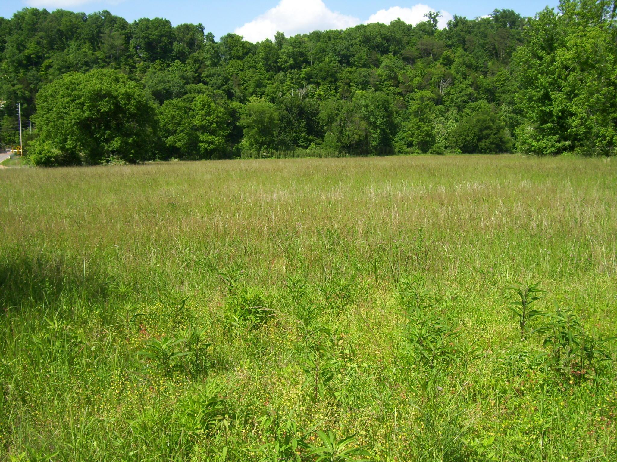 1 Big Buffalo Estates Circle Property Photo