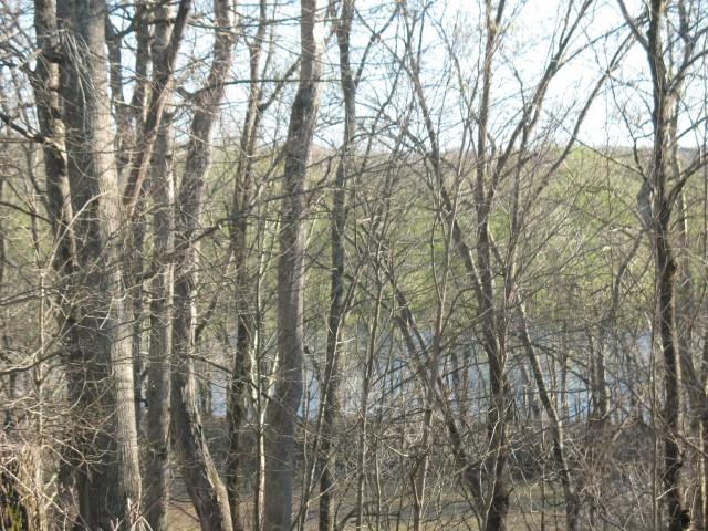 Bellwood Lake Farm Real Estate Listings Main Image