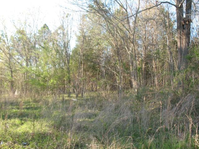 0 Patricia Cir, Indian Mound, TN 37079 - Indian Mound, TN real estate listing