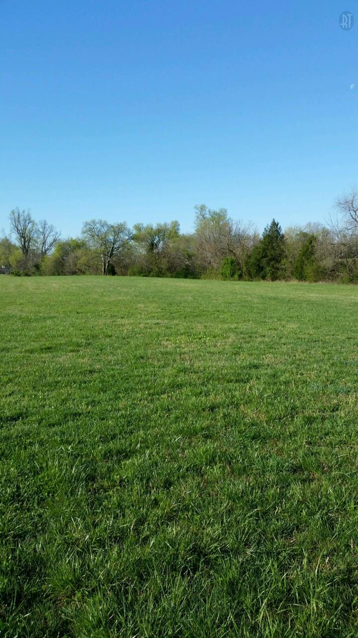 0 Cornersville Hwy, Cornersville, TN 37047 - Cornersville, TN real estate listing
