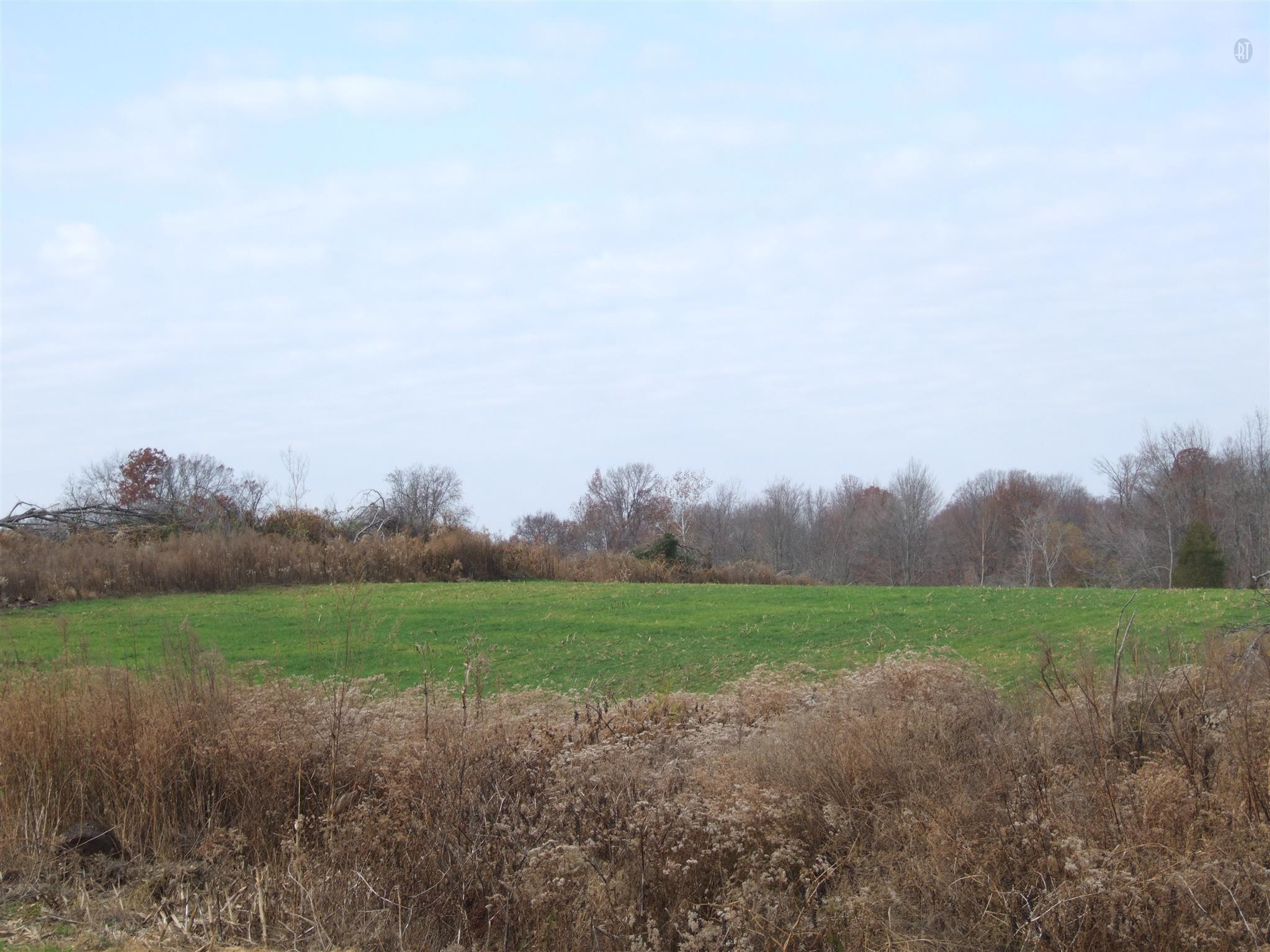 11.85 Acres Real Estate Listings Main Image