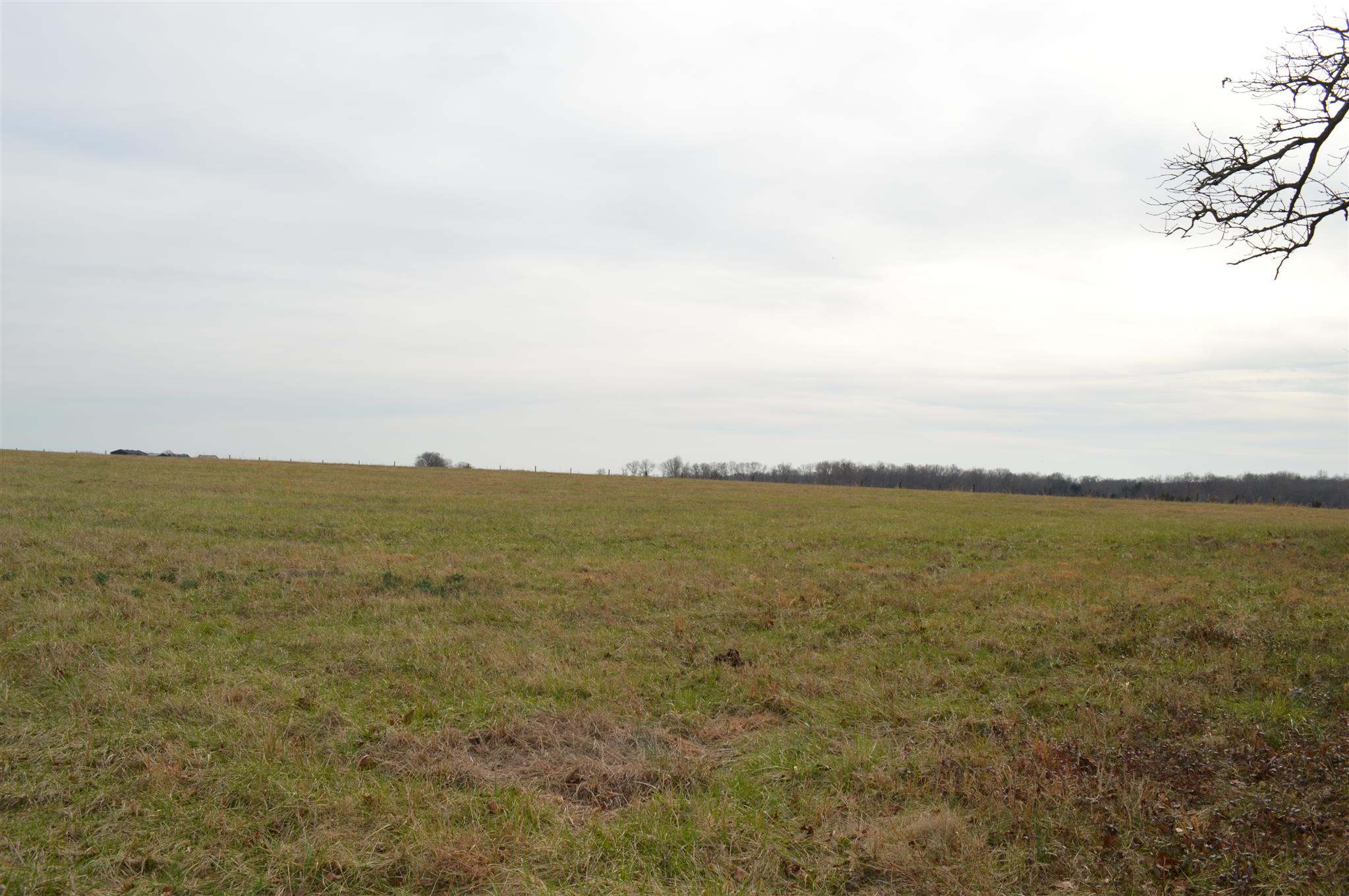 0 Old Dover Rd Property Photo - Woodlawn, TN real estate listing