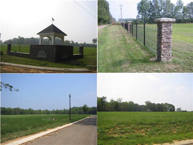 81 Lexington Cir Property Photo