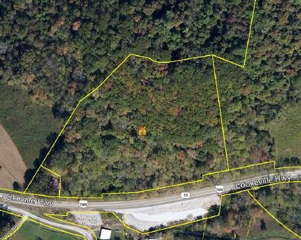 0 Cookeville Hwy, Elmwood, TN 38560 - Elmwood, TN real estate listing
