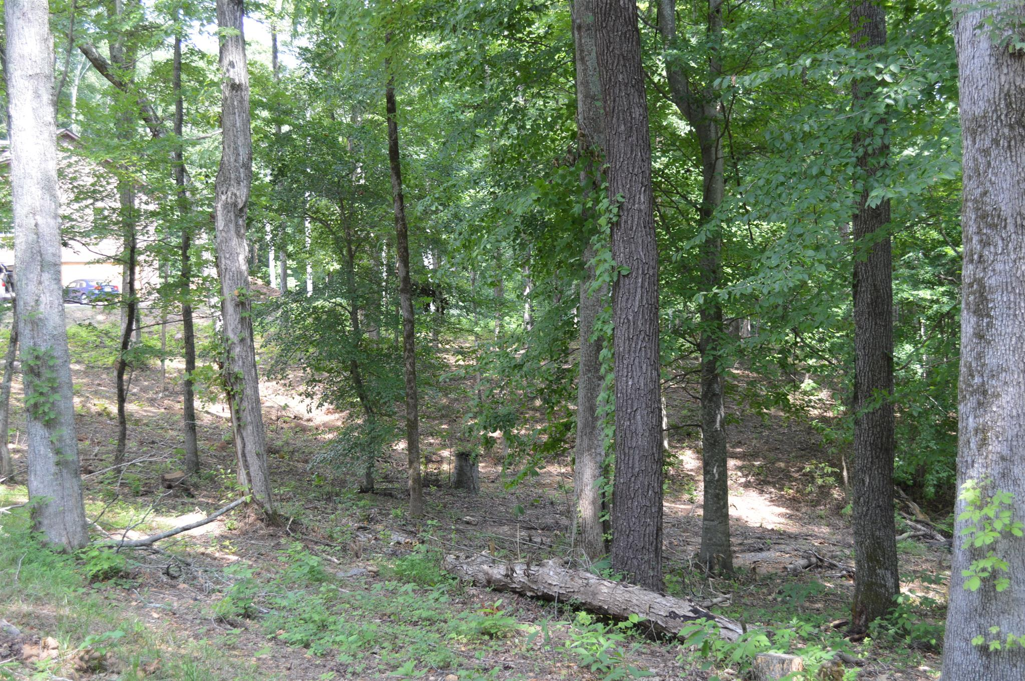 5 Wiley Pardue Rd Property Photo