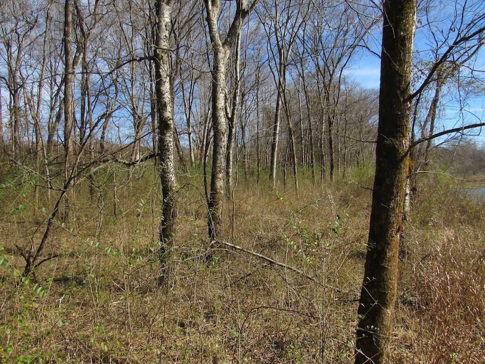 0 River Bend Dr, Linden, TN 37096 - Linden, TN real estate listing