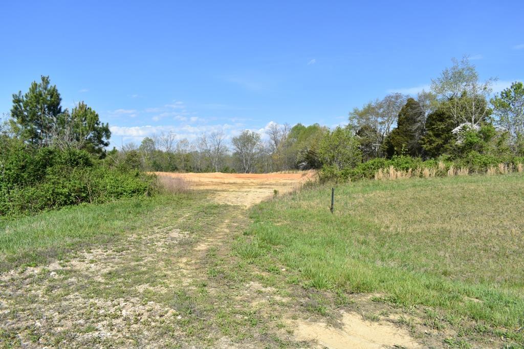 0 Bethel Palk Rd, Bloomington Springs, TN 38545 - Bloomington Springs, TN real estate listing