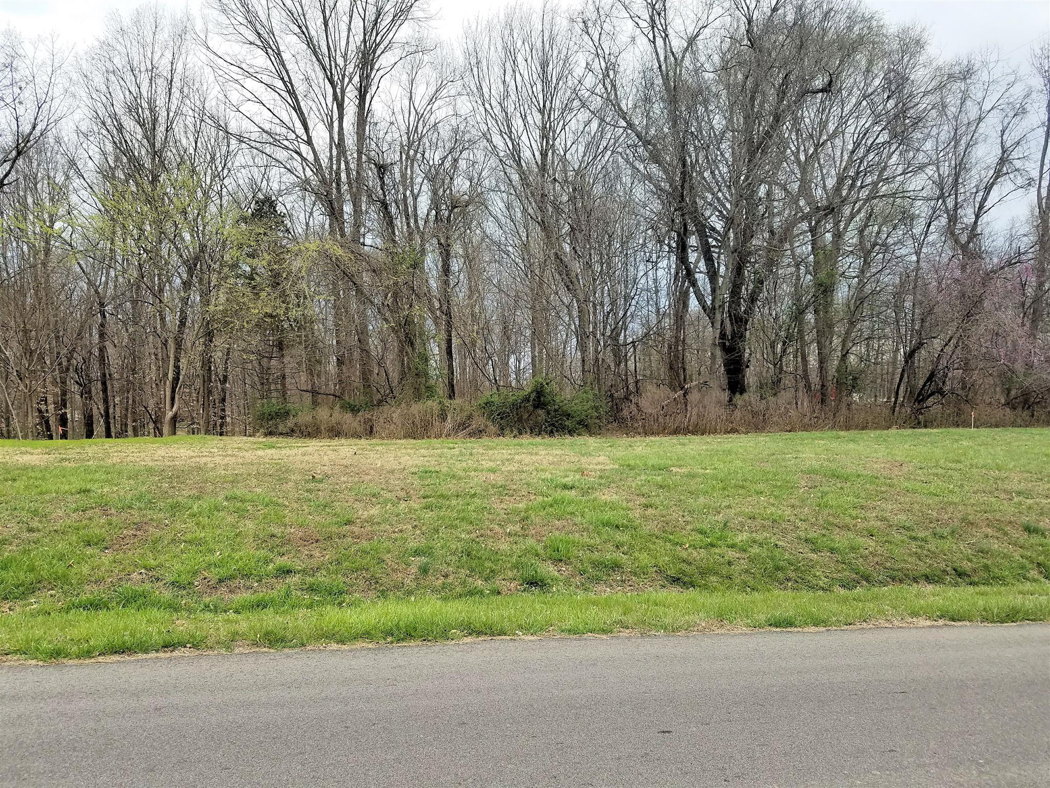 3055 NICOLE RD, Clarksville, TN 37040 - Clarksville, TN real estate listing