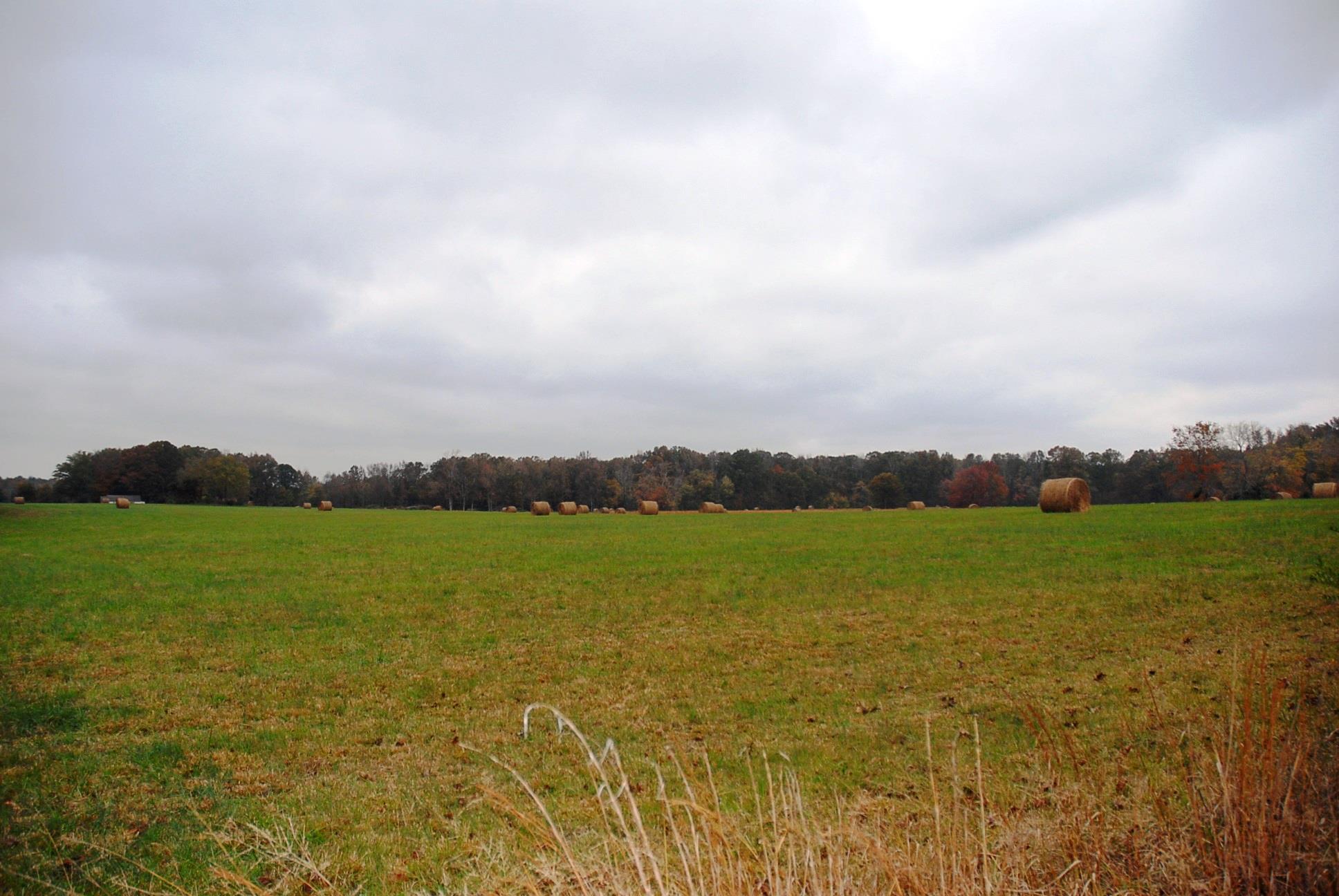 0 Ledford Mill Rd - 20.6 AC Property Photo - Tullahoma, TN real estate listing