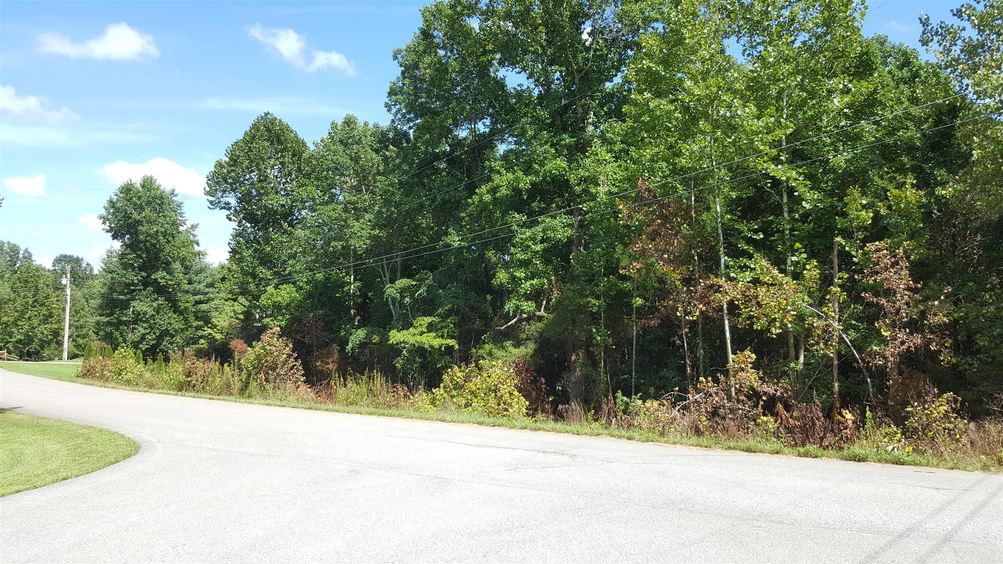 0 Beechwood Cir, Burns, TN 37029 - Burns, TN real estate listing