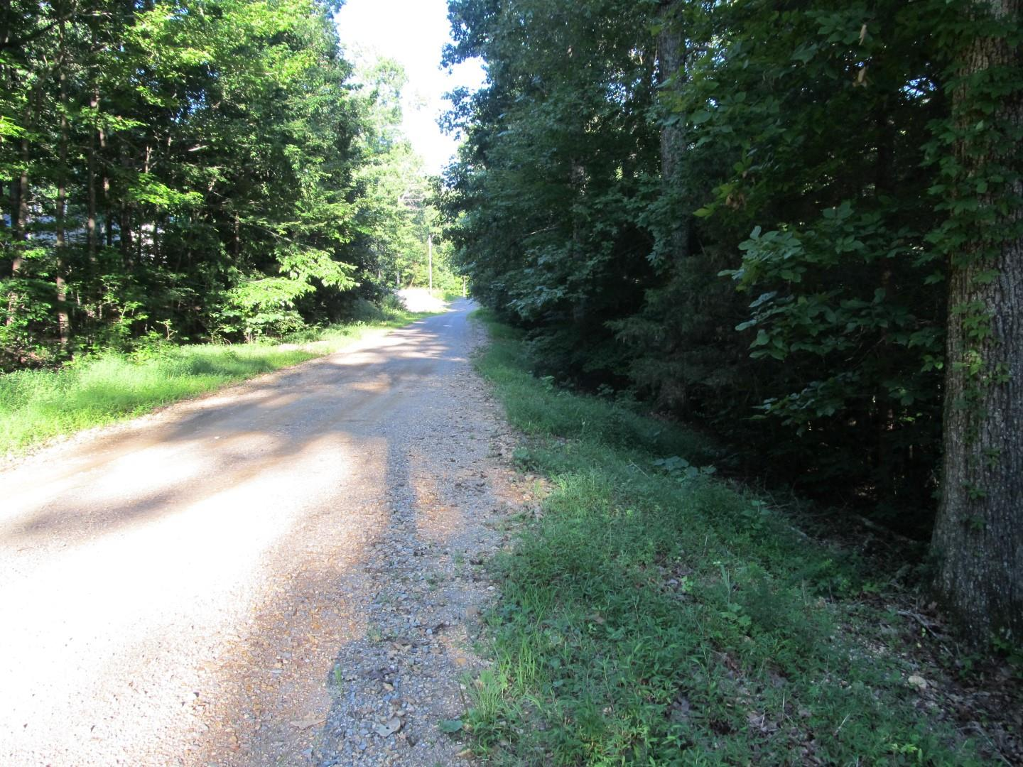 0 Lakeshore Dr N Property Photo - Bumpus Mills, TN real estate listing