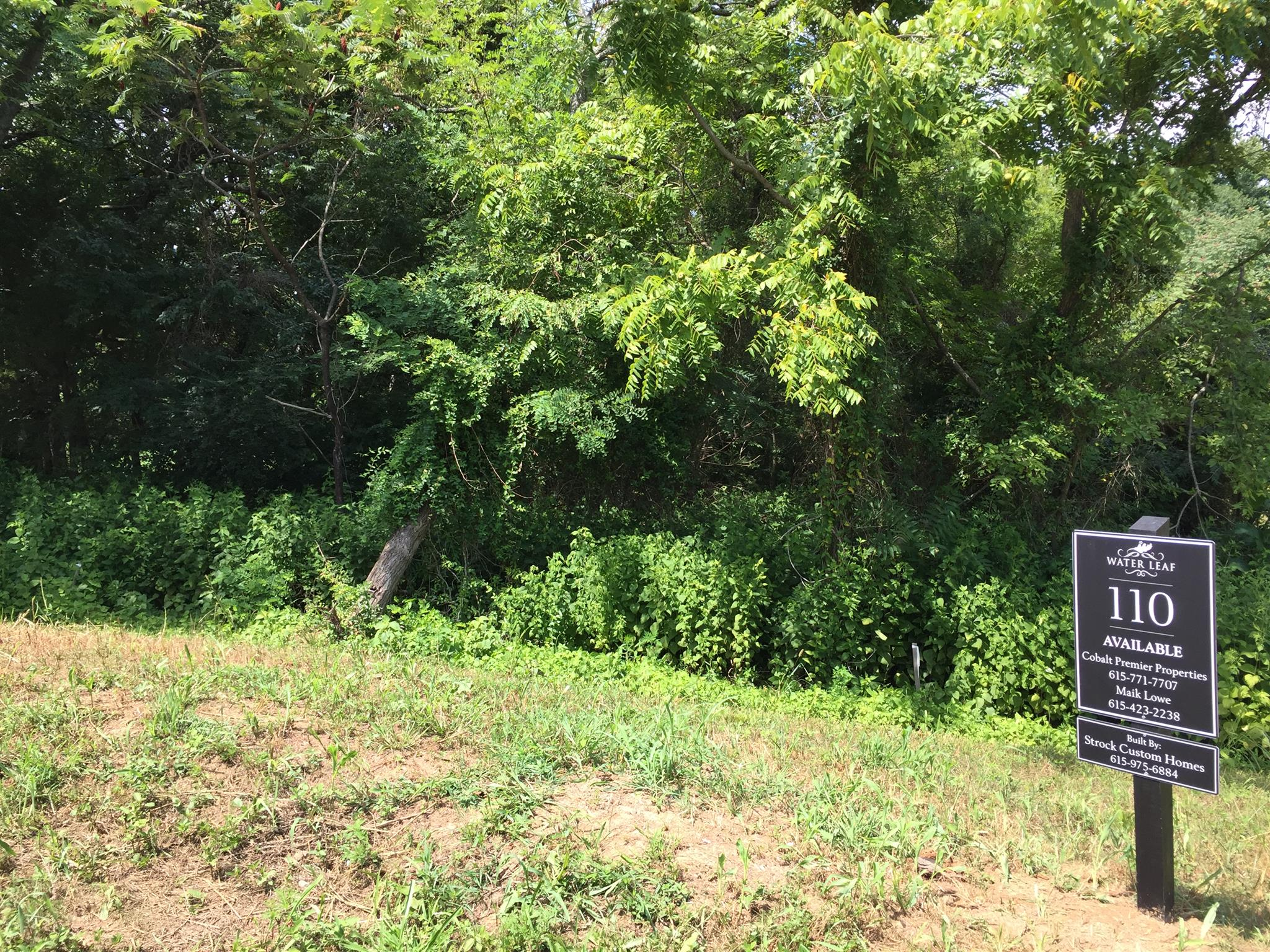 5042 Water Leaf Dr (lot 110), Franklin, TN 37064 - Franklin, TN real estate listing