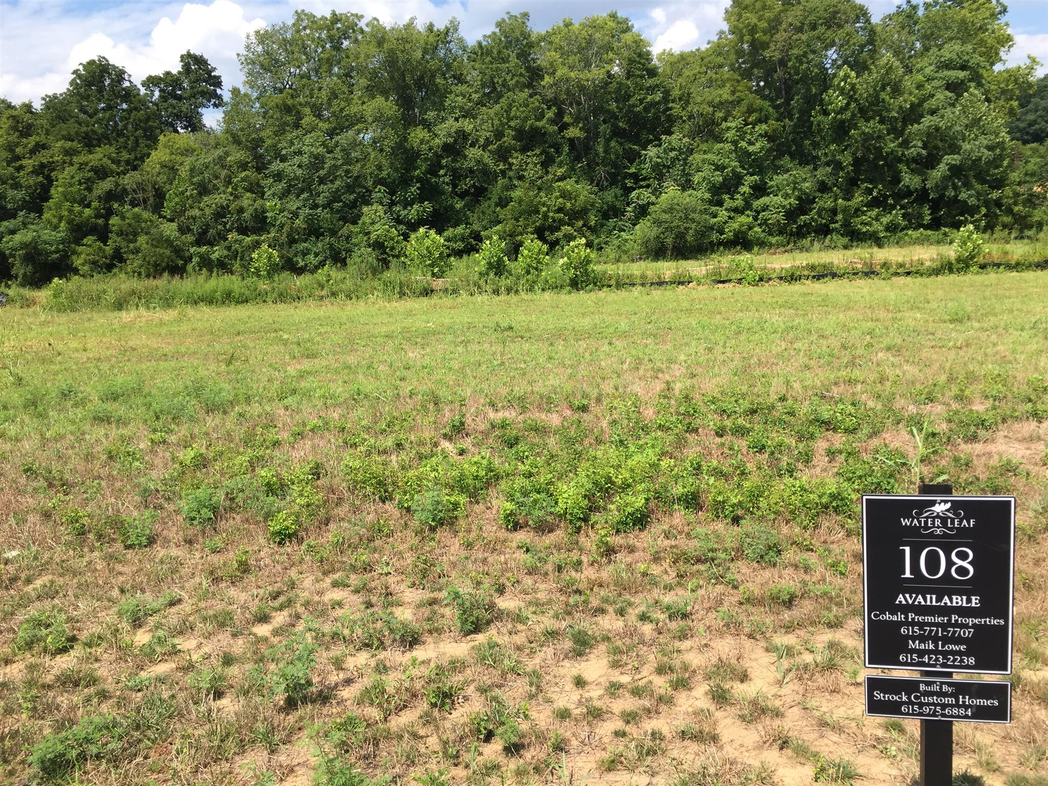 5034 Water Leaf Dr (lot 108), Franklin, TN 37064 - Franklin, TN real estate listing