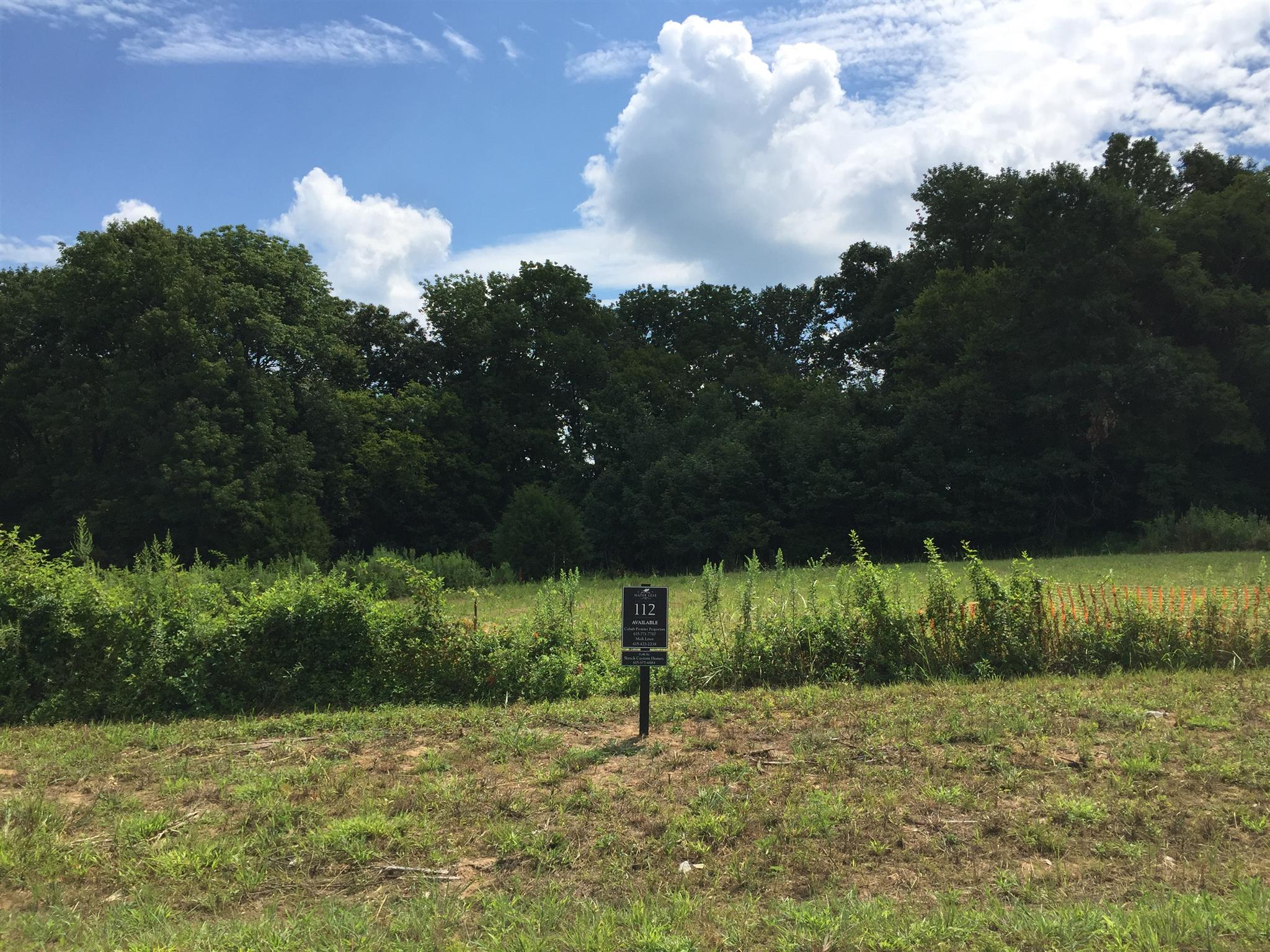 5037 Water Leaf Dr (Lot 112), Franklin, TN 37064 - Franklin, TN real estate listing