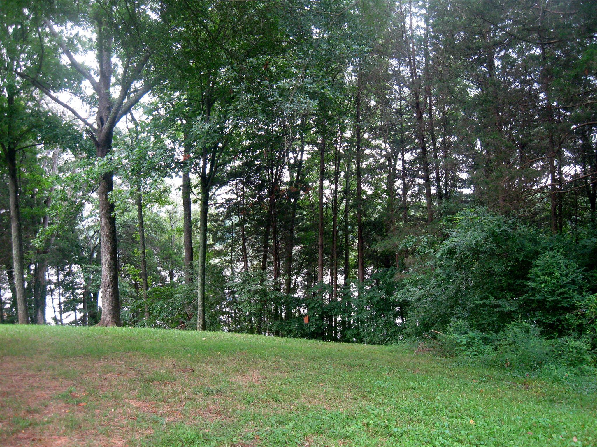 2 Flower Point Dr Property Photo - Estill Springs, TN real estate listing