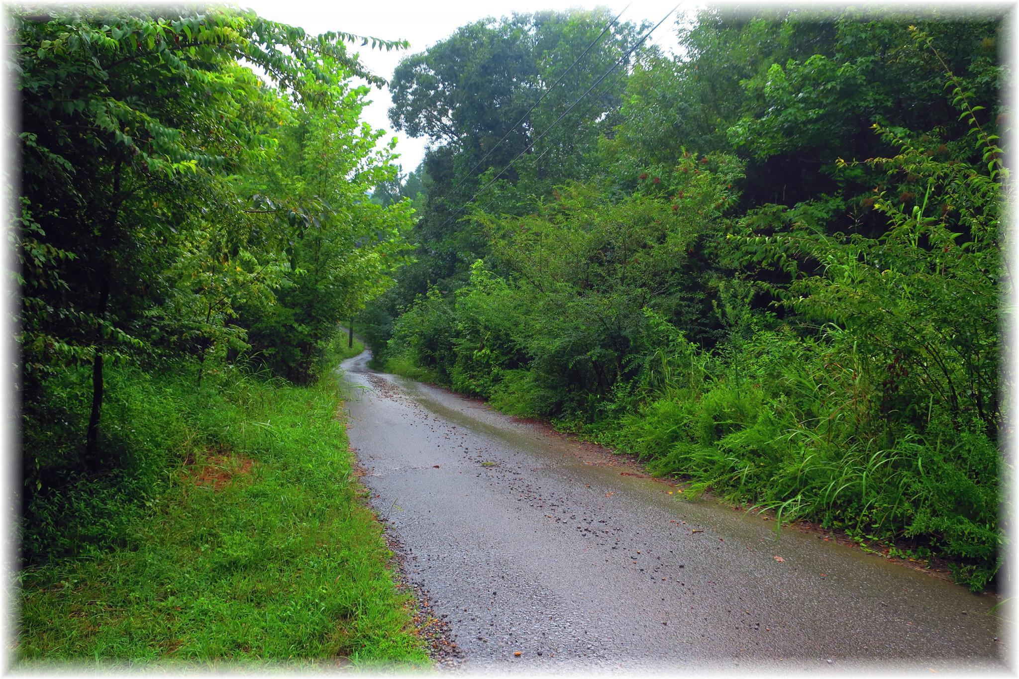 8694 Poplar Creek Rd, Nashville, TN 37221 - Nashville, TN real estate listing
