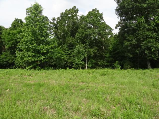 34 BACKWOOD ESTATES, Indian Mound, TN 37079 - Indian Mound, TN real estate listing