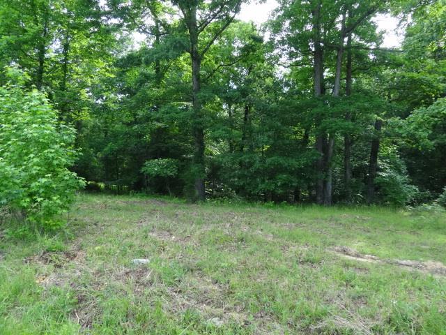 20 BACKWOOD ESTATES, Indian Mound, TN 37079 - Indian Mound, TN real estate listing
