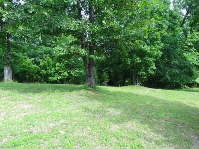 40 BACKWOODS ESTATES, Indian Mound, TN 37079 - Indian Mound, TN real estate listing