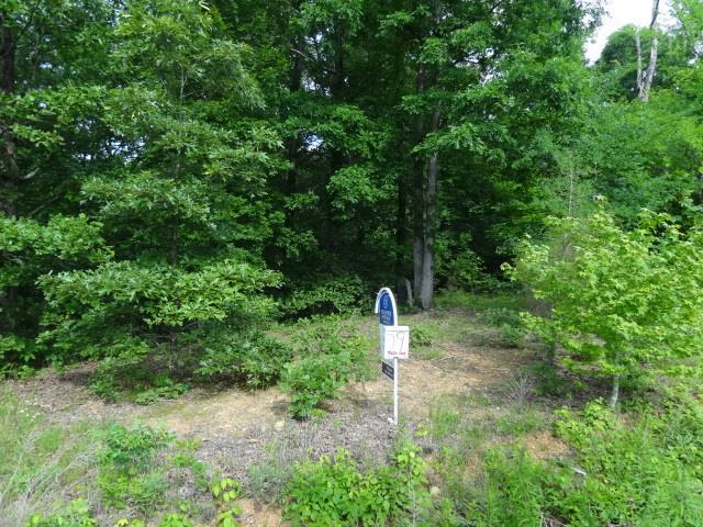 29 BACKWOOD ESTATES, Indian Mound, TN 37079 - Indian Mound, TN real estate listing