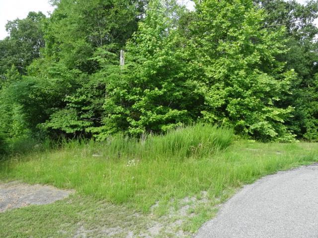 26 BACKWOOD ESTATES, Indian Mound, TN 37079 - Indian Mound, TN real estate listing