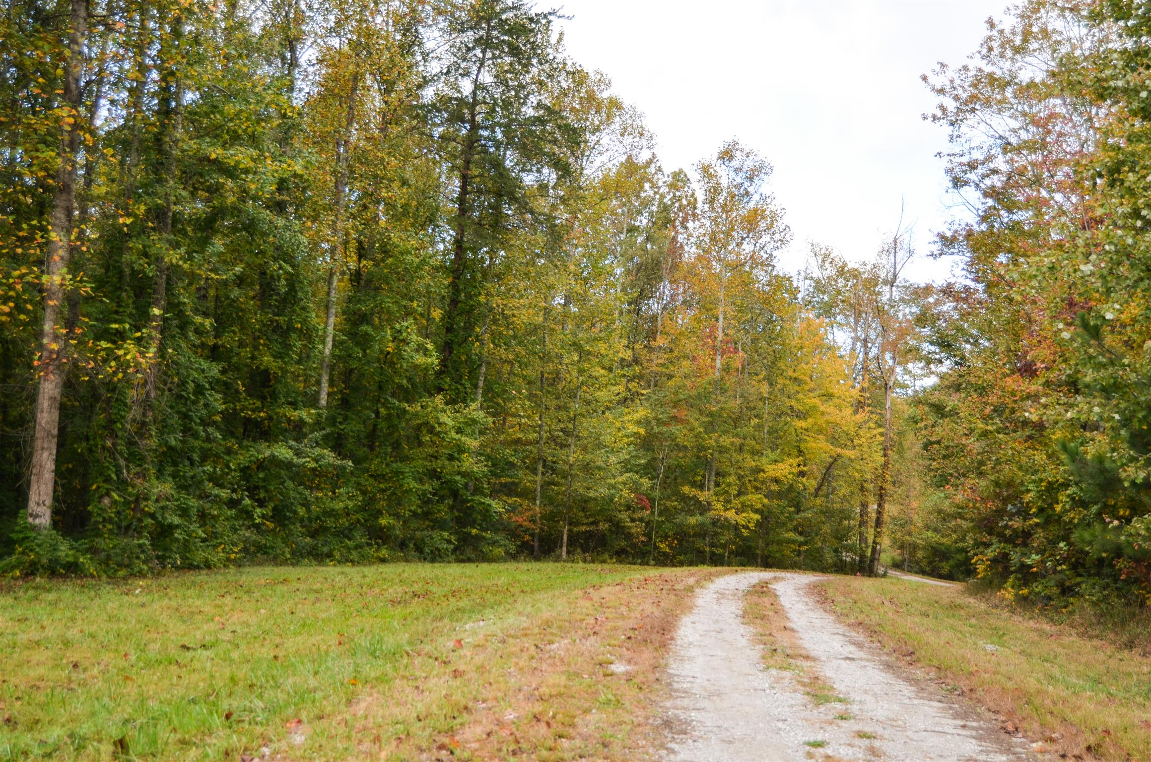 4 Woodmonte Dr, Monteagle, TN 37356 - Monteagle, TN real estate listing